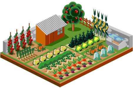 Политиката в земеделието